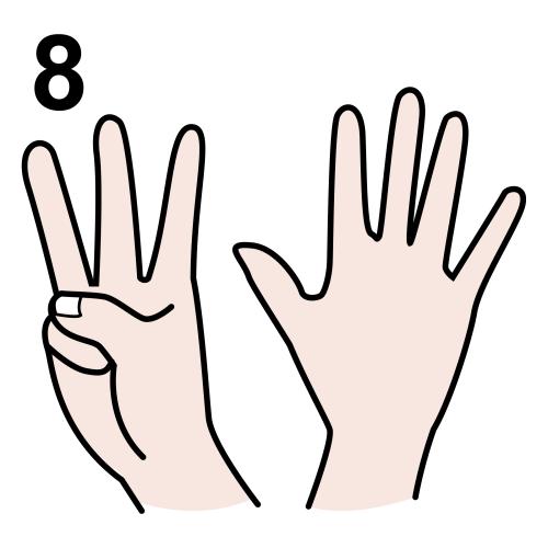 eight (8)