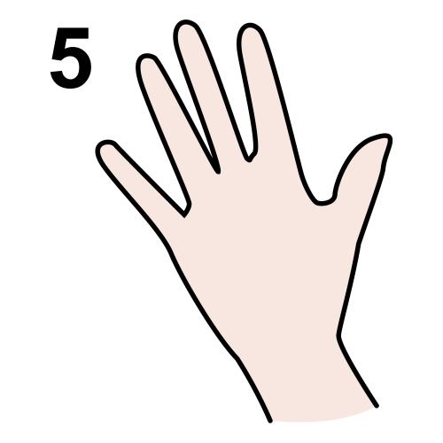 five (5)